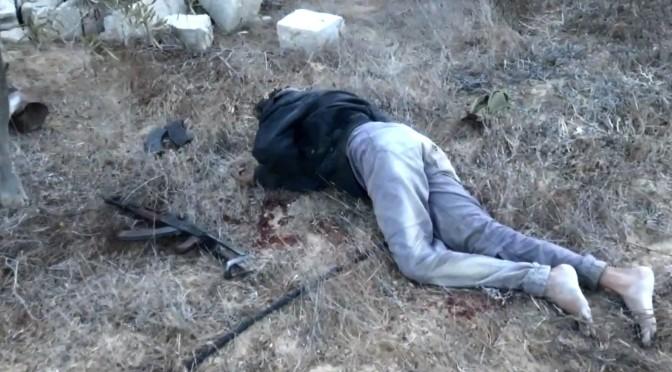 Analysis of Sinai killing videos